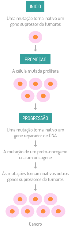 Esquema Células